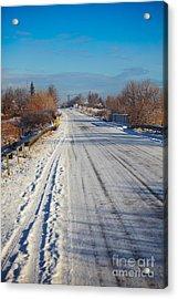Road In Winter Acrylic Print by Gabriela Insuratelu