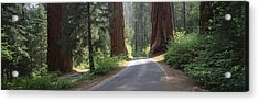 Road Passing Between The Guardsmen Acrylic Print by Greg Probst