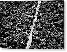 Road Through Brazilian Sub Tropical Rain Forest Iguacu Parana Brazil South America Acrylic Print by Joe Fox
