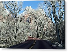 Road Through Zion Canyon Acrylic Print by Bob and Nancy Kendrick