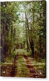 Road To Anywhere Acrylic Print