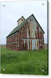 Road To Champaign Acrylic Print by Todd Sherlock