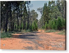Road To Nowhere Acrylic Print by Joanne Kocwin