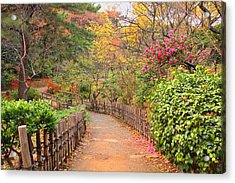 Road With Fence Acrylic Print by ~~**Yuri's Photography**~~
