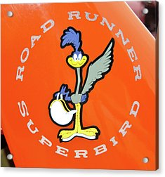 Roadrunner Acrylic Print by Guy Whiteley