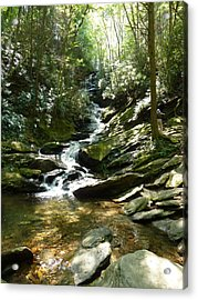Roaring Creek Falls - II Acrylic Print by Joel Deutsch