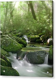 Acrylic Print featuring the photograph Roaring Fork by Cindy Haggerty