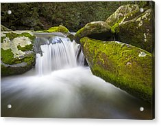 Roaring Fork Great Smoky Mountains National Park - The Simple Pleasures Acrylic Print by Dave Allen