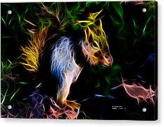 Robbie The Squirrel - 7839 - Fractal Acrylic Print by James Ahn