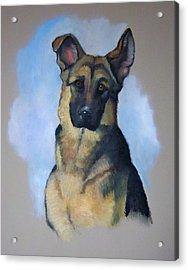 Rob's Dog Acrylic Print by Joyce Geleynse