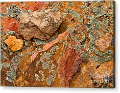 Rock Abstract IIi Acrylic Print