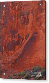 Rock Art Acrylic Print by Anne Gordon