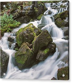 Acrylic Print featuring the photograph Rock Island by Brian Duram