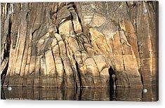 Rock Paws Acrylic Print by Cathie Douglas