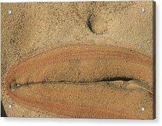 Rock Sculpture Acrylic Print
