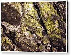 Rock Wall 1 Acrylic Print by Mark Ivins