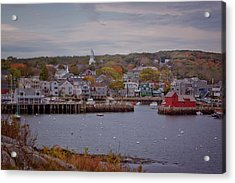 Acrylic Print featuring the photograph Rockport Harbor by Tom Singleton