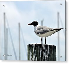 Rockport Harbormaster Acrylic Print