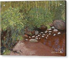 Rocky Mountain Creek Acrylic Print by Ginny Neece