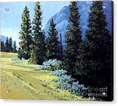 Rocky Mountain Meadow Acrylic Print