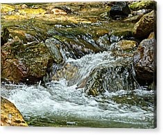 Acrylic Print featuring the photograph Rocky River by Lydia Holly