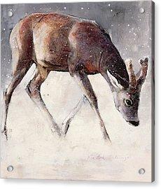 Roe Buck - Winter Acrylic Print