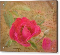 Romantic Rose Notes Acrylic Print by Cindy Wright
