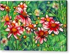 Rondo Acrylic Print by Aimelle
