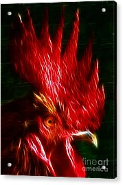 Rooster - Electric Acrylic Print by Wingsdomain Art and Photography