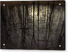 Roots Acrylic Print