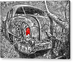 Roots Of A Journey  Acrylic Print by Jerry Cordeiro