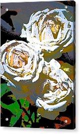 Rose 126 Acrylic Print by Pamela Cooper