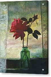 Rose And Rosebud Acrylic Print