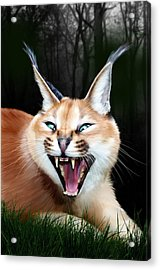 Rose Acrylic Print by Big Cat Rescue