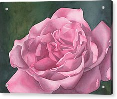 Rose Blush Acrylic Print by Leona Jones