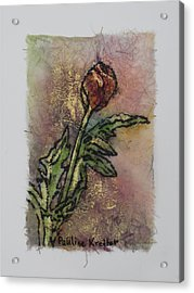 Acrylic Print featuring the painting Rose Bud by Pauline  Kretler