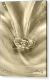 Acrylic Print featuring the digital art Rose From A Dream by Johnny Hildingsson