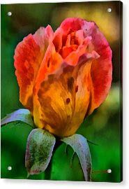 Acrylic Print featuring the painting Rose by Lynne Jenkins