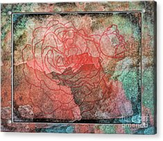 Rose Outline Abstract Acrylic Print by Debbie Portwood