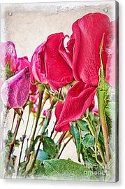 Roses In White Acrylic Print by Joan  Minchak