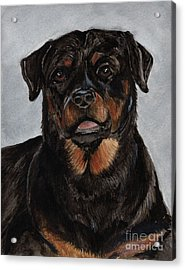 Acrylic Print featuring the painting Rottweiler  by Nancy Patterson