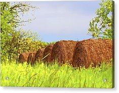 Round Bales Acrylic Print