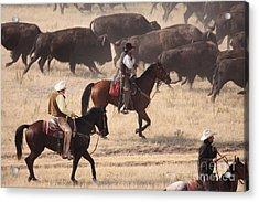 Round Em Up  Cowboys Acrylic Print