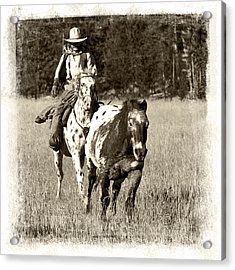 Round-up Acrylic Print by Jerry Fornarotto