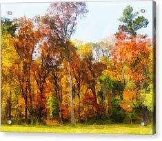 Row Of Autumn Trees Acrylic Print by Susan Savad