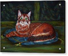 Royal Cat Acrylic Print by Elena Melnikova