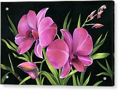 Acrylic Print featuring the painting Royal Pink Orchids by Nancy Tilles