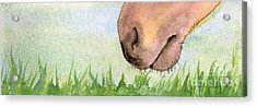 Acrylic Print featuring the painting Rubbing Your Nose In It by Annemeet Hasidi- van der Leij