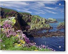 Acrylic Print featuring the photograph Rugged Coast by Rod Jones