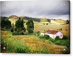 Ruin In Countryside Acrylic Print by Carlos Caetano